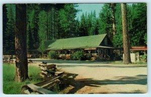 SONORA PASS, California CA ~ DARDANELLES RESORT c1960s Tuolumne County Postcard