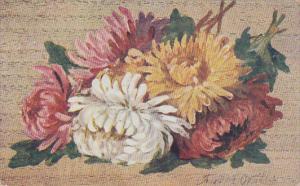 Colorful Chrysanthemum Flowers, 00-10s