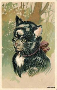 Artist impression Pretty Cat Ribbon around Neck C-1910 postcard 9236