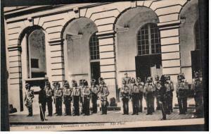 BELGIUM; Grenadiers et Carabiniers, 00-10s