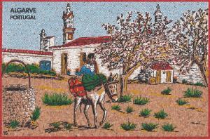 Portugal Algarve Horse Original Felt Postcard