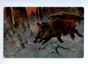 157038 Winter HUNT Wild Boar by OTTO FINKENTSCHER Vintage PC