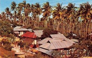 Malay Kampong Singapore Unused