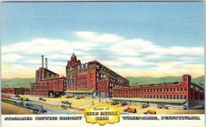 WILKES-BARRE, PA Pennsylvania  STEGMAIER BREWING CO Train  c1940s Linen Postcard