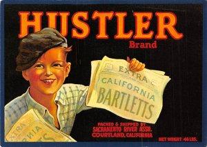Hustler brand Cortland, CA, USA Advertising Unused