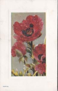 Tucks Poppies Flower Studies Series 9704