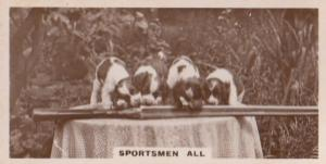 Sportsmen All Dogs Dog Sniffing Rifle Gun Old Real Photo Cigarette Card