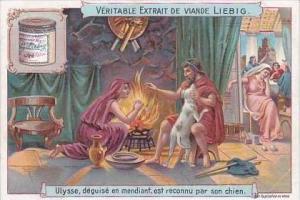 Liebig Vintage Trade Card S757 Animals History II No 2 Ulysee Dog