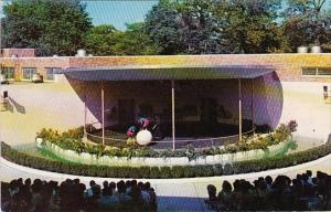 Joe Mendi Chimpanzee Theater Detroit Zoo Detroit Michigan