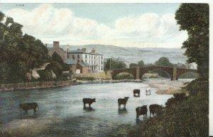 Wales Postcard - The Bridge - Llanrwst - Caernarvonshire - Ref 19712A