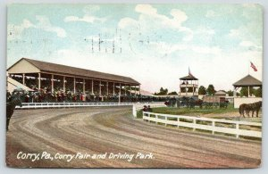 Corry Pennsylvania~Corry Fair & Driving Park~Horse Racing~1906 Postcard