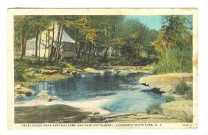 Trout Brook near Buffalo Camp and Park Restaurant, Allegheny State Park, New ...