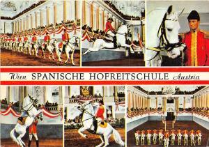 B43858 chevaux horse Spanish Court Riding School Vienne  austria animals