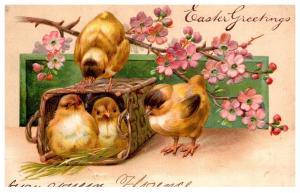 Easter , Chicks in basket