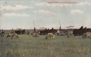 Harvesting In South Dakota