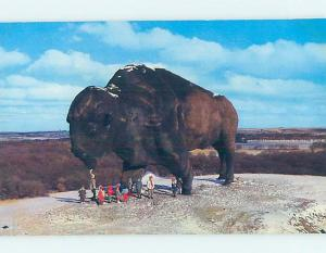 Unused Pre-1980 WORLD'S LARGEST BUFFALO Jamestown North Dakota ND hn2701