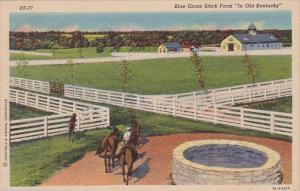 Kentucky Louisville Blue Grass Stock Farm Curteich