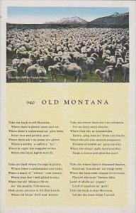 Montana 940 Old Montana