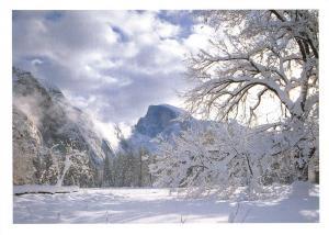 Yosemite National Park, California, USA Postcard, Yosemite Valley in Winter X28