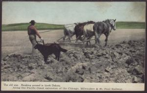 Breaking Ground in ND,Horse and Plow Postcard