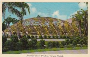 Beautiful Busch Gardens Tampa Florida 1963
