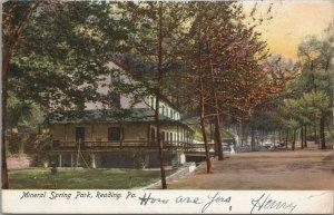 Pennsylvania Vintage Postcard Reading, Mineral Springs Park