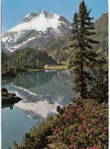 Maloja, Lago di Cavloccio mit Monte del Forno, used Postcard