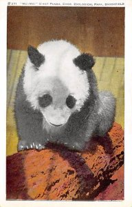 Bear Post Card Mei-Mei, Giant Panda Brookfield, IL, USA Unused
