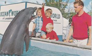 FORT LAUDERDALE, Florida; Feeding Pool, Porpoises, Ocean World, 40-60s