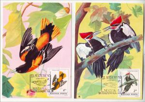 P585 JLs 4 1985 colorful hungary birds with stamps, last scan design on reverses