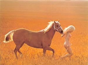 Blonde Beauty - Tony Stone