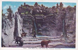 Colorado Denver New Bear Pit City Park Zoo