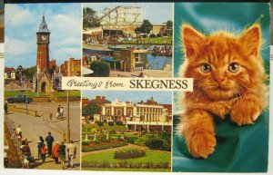England Greetings from Skegness Boating Lake Clock Tower etc - unposted