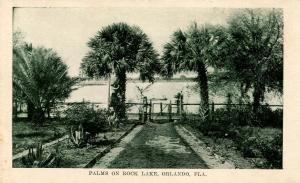 FL - Orlando. Rock Lake, Palms