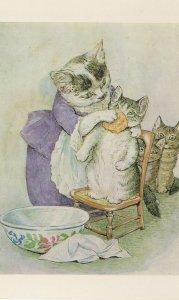 Washing A Cat Cats Nose Beautiful National Trust Postcard
