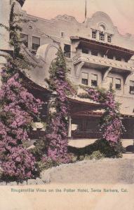 Santa Barbara , California , 00-10s ; Bouganvilla Vines on the Potter Hotel