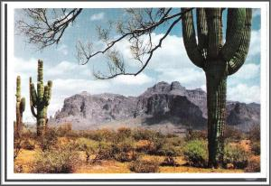 Arizona Superstition Mountain - [AZ-080x]