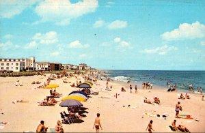 Virginia Virginia Beach Sunbathers