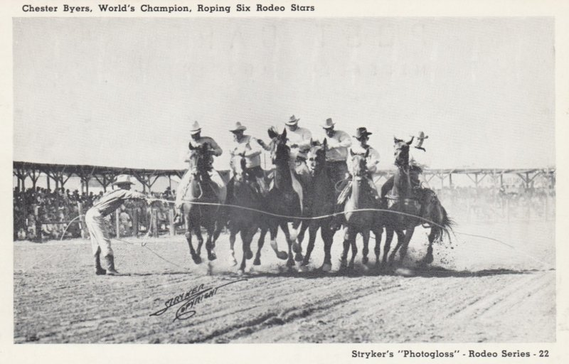 RODEO ; Chester Byers , World's Chapion Roper , Six Horses at Once 40-50s