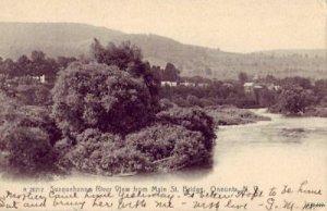 VIEW OF SUSQUEHANNA RIVER ONEONTA, NY 1908