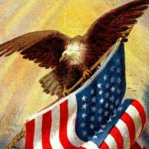 c 1910 Patriotic Postcard American Flag Eagle Poem Country That We Love
