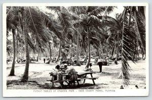 Miami Beach Dade County Florida~Crowded Crandon Park Picnic Tables~1950 RPPC