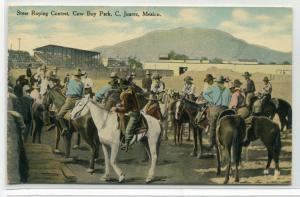 Steer Roping Cowboy Park Horses Ciudad Juarez Mexico 1910 postcard