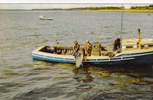 Tuna Fishing Wedgeport Nova Scotia Canada 1956