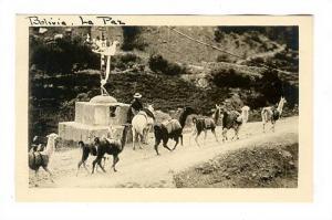 RP, Serial # H-520 Bolivia - La Paz, A Wayside Shrine, With A Llama Pack-Trai...