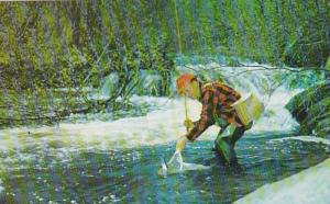 Fishing Fisherman Catching Trout