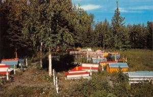 EKLUTNA VILLAGE~Anchorage AK Alaska  INDIAN BURIAL GROUND Tribal Graves Postcard
