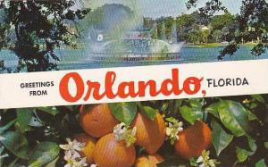 Florida Orlando Greetings From Orlando