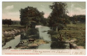 Headwaters of the Kennebunk