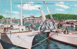 Florida Clearwater Beach Boat Docks At Municipal Marina